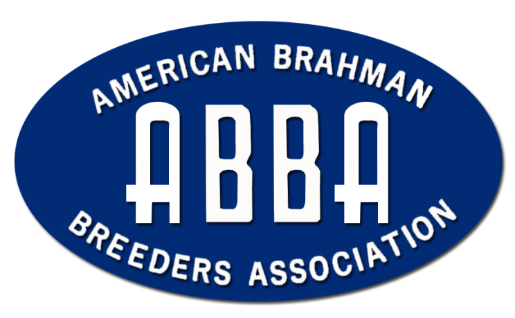 American Brahman Breeders Association